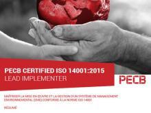 ISO 14001 LI