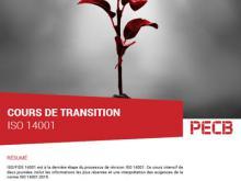 Formation 14001 transition