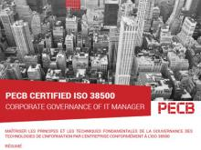ISO 38500 IT Manager