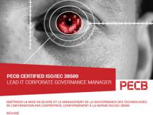 ISO 38500 Lead IT Manager