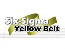 Formation lean six sigma black belt