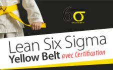 Certification LLS Yellow Belt